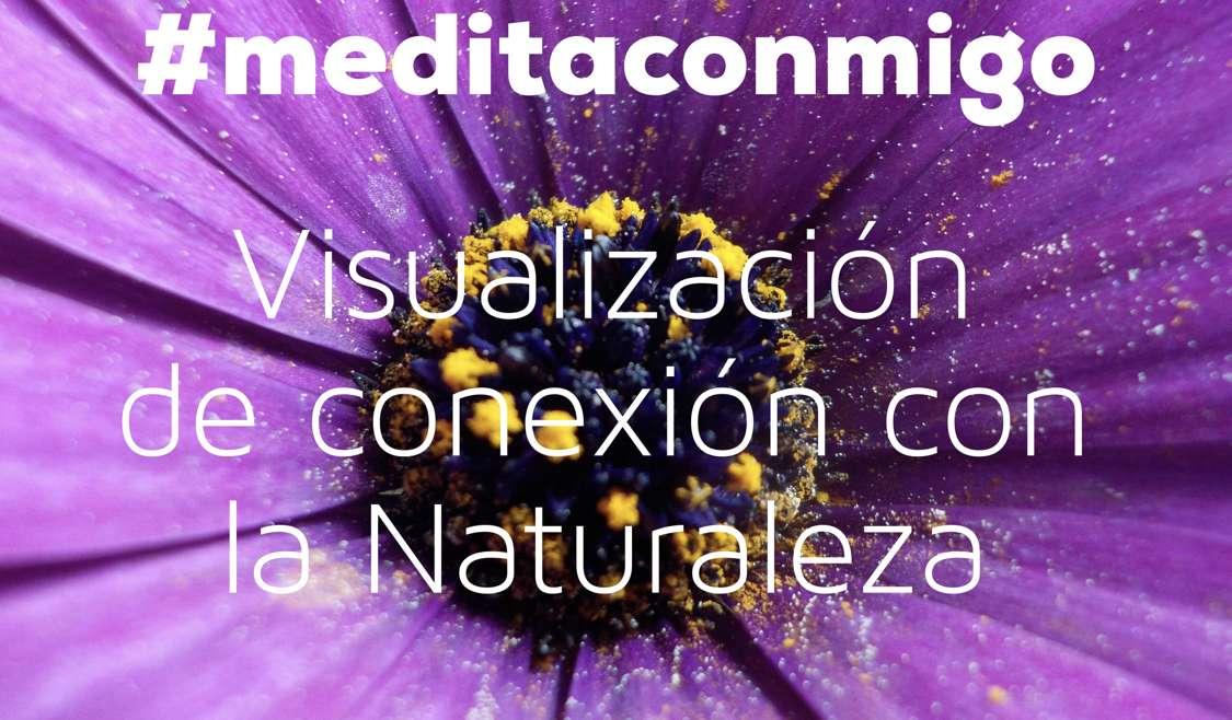 Meditación guiada: visualización de conexión con la Naturaleza